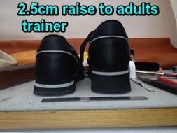 2.5 raise
