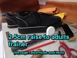 2.5 trainer
